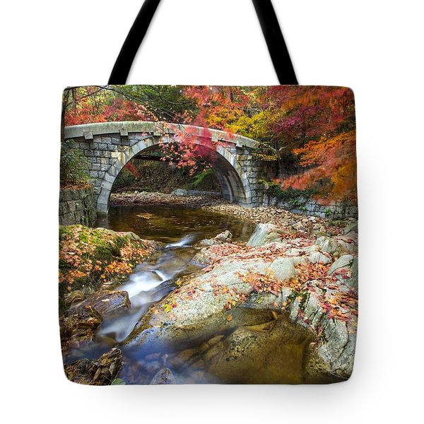 Dying Colours Tote Bag
