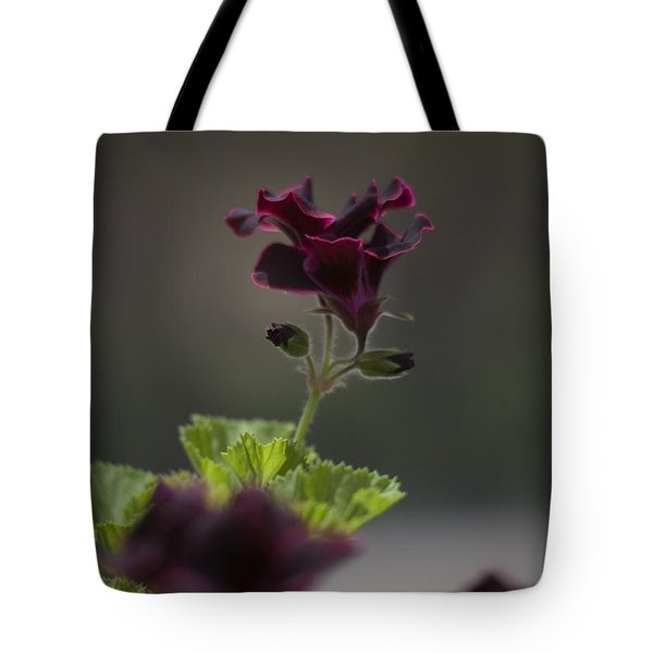 Dying Embers Tote Bag by Morris  McClung