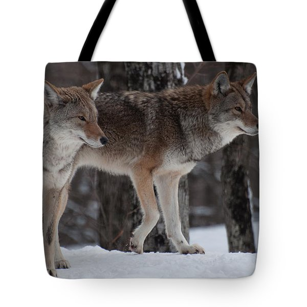 Tote Bag featuring the photograph Dynamic Duo by Bianca Nadeau