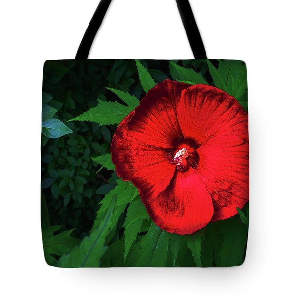 Dynamic Red Tote Bag