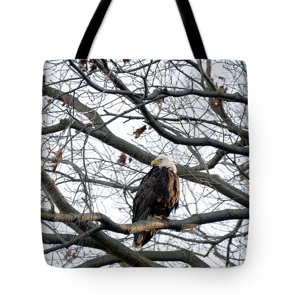 Eagel 0 Tote Bag