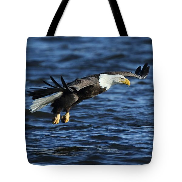 Tote Bag featuring the photograph Eagle And Pelican by Coby Cooper