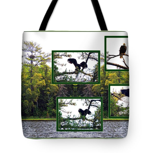 Tote Bag featuring the photograph Eagle Collage by Teresa Schomig