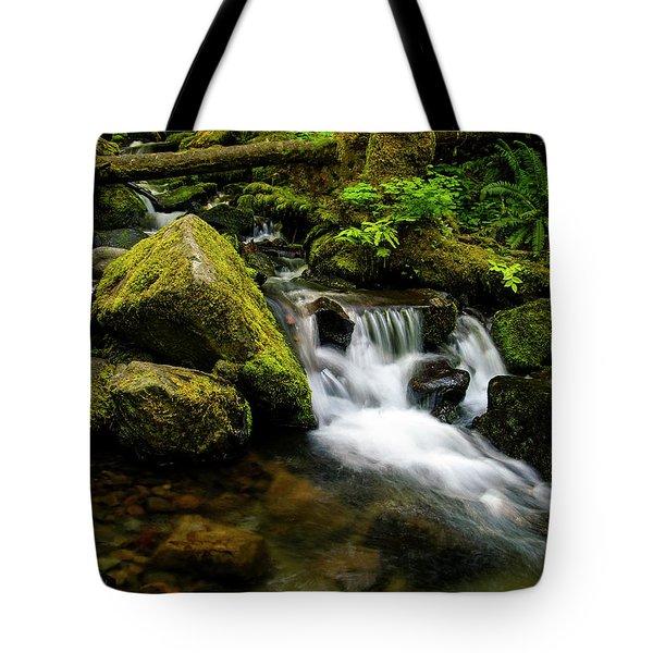 Eagle Creek Cascade Tote Bag