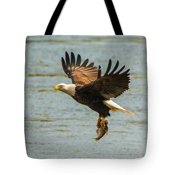 Eagle Departing With Prize Close-up Tote Bag