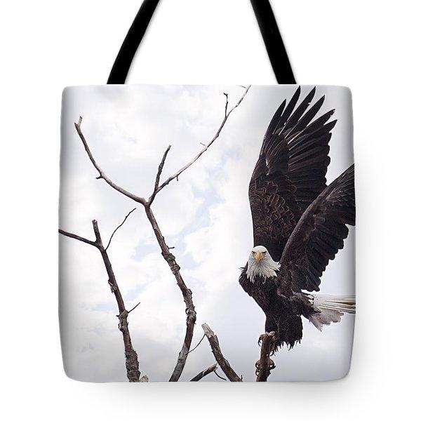 Eagle Tote Bag by Everet Regal
