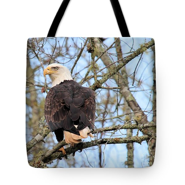 Eagle Eye On You  Tote Bag