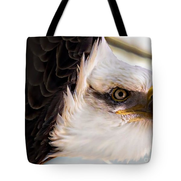 Eagle Eye Tote Bag by Sherman Perry