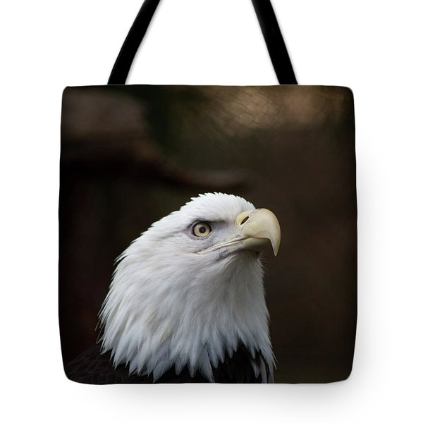 Tote Bag featuring the photograph Eagle Eye by T A Davies