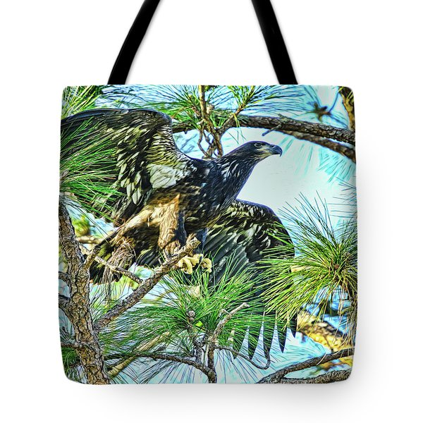 Tote Bag featuring the photograph Eagle Fledgling 2017 by Deborah Benoit