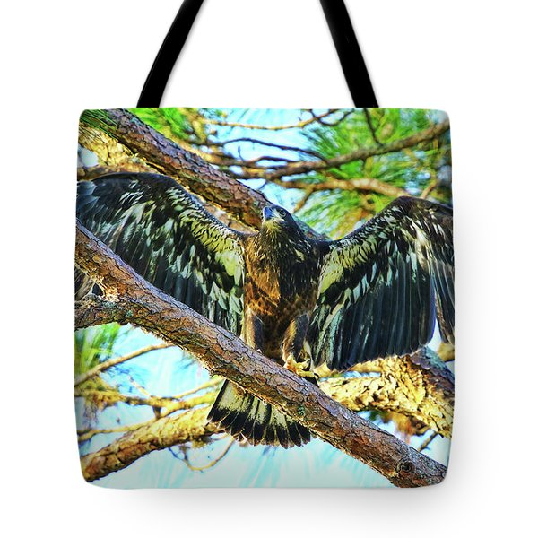 Tote Bag featuring the photograph Eagle Fledgling II 2017 by Deborah Benoit