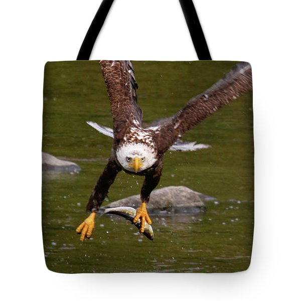 Tote Bag featuring the photograph Eagle Fying With Fish by Debbie Stahre