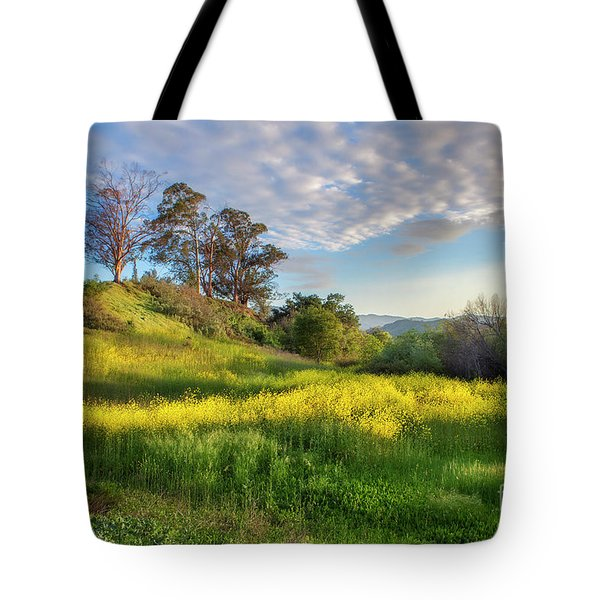 Tote Bag featuring the photograph Eagle Grove At Lake Casitas In Ventura County, California by John A Rodriguez
