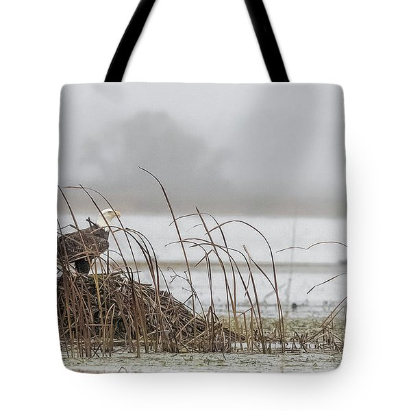 Eagle Hunts For Coots And Ducks Tote Bag