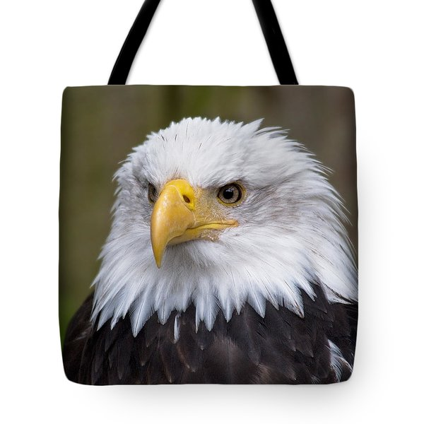 Eagle In Ketchikan Alaska Tote Bag