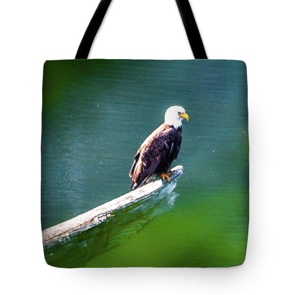 Eagle In Lake Tote Bag