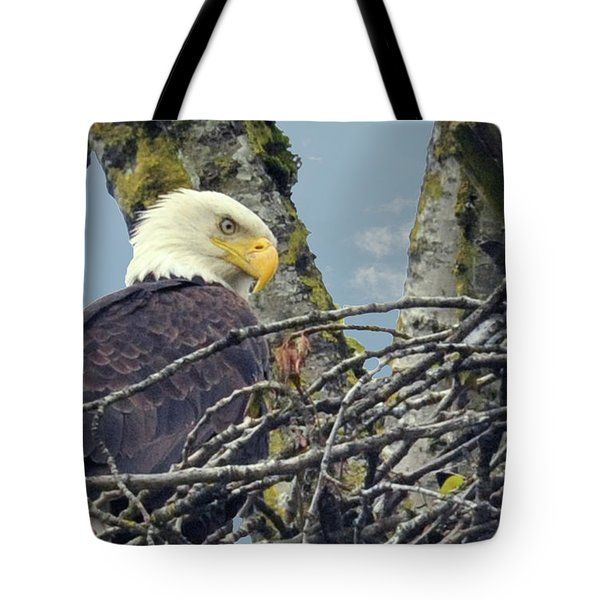 Tote Bag featuring the photograph Eagle In Nest by Rod Wiens