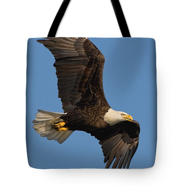 Eagle In Sunlight Tote Bag