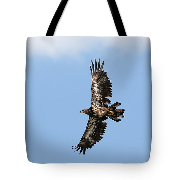 Eagle In The Clouds Tote Bag