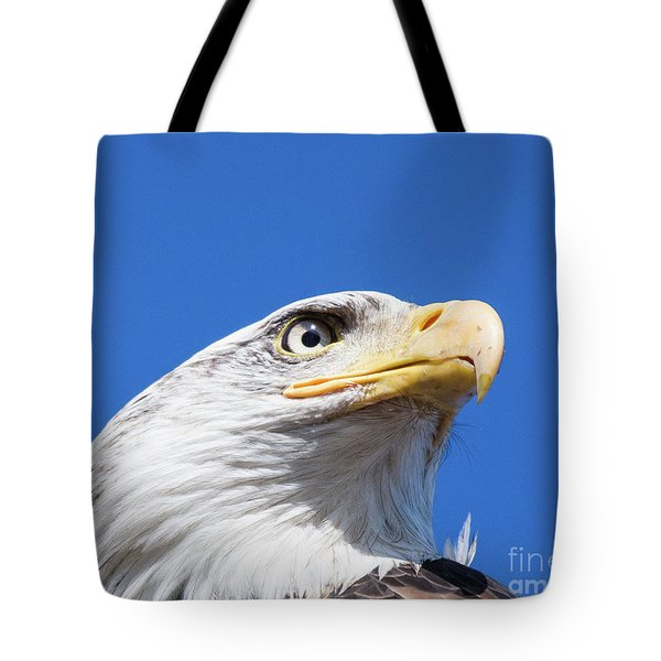 Tote Bag featuring the photograph Eagle by Jim  Hatch
