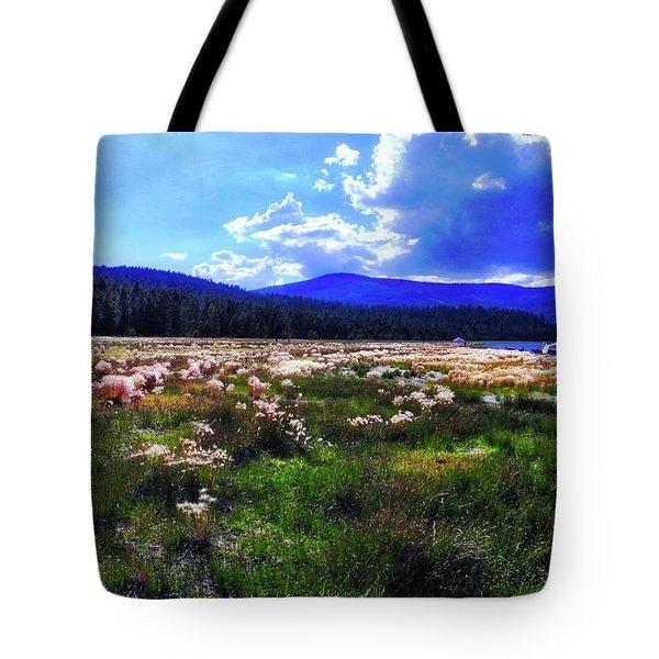 Eagle Lake Afternoon Tote Bag
