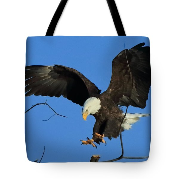 Tote Bag featuring the photograph Eagle Landing by Coby Cooper