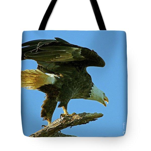 Eagle Mom, The Scolding Tote Bag