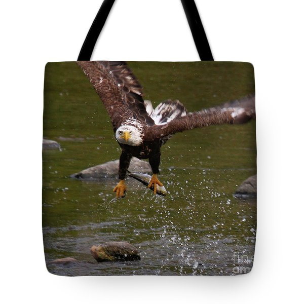 Tote Bag featuring the photograph Eagle Over Seal Rock by Debbie Stahre