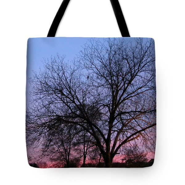 Eagle Over Sunset Tote Bag