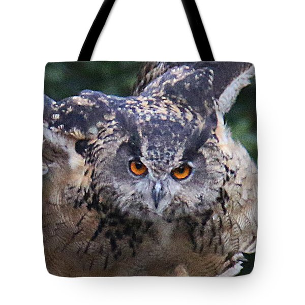 Eagle Owl Close Up Tote Bag