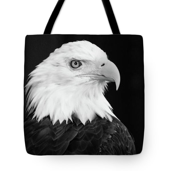 Tote Bag featuring the photograph Eagle Portrait Special  by Coby Cooper