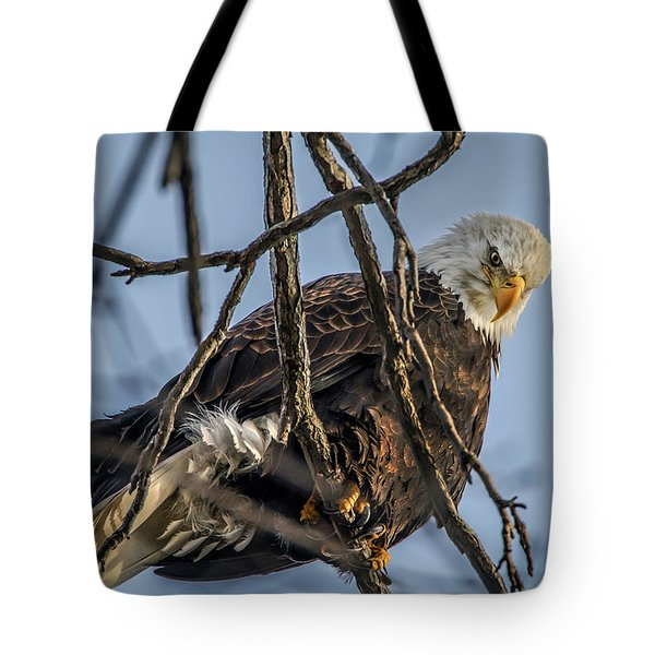 Eagle Power Tote Bag by Ray Congrove