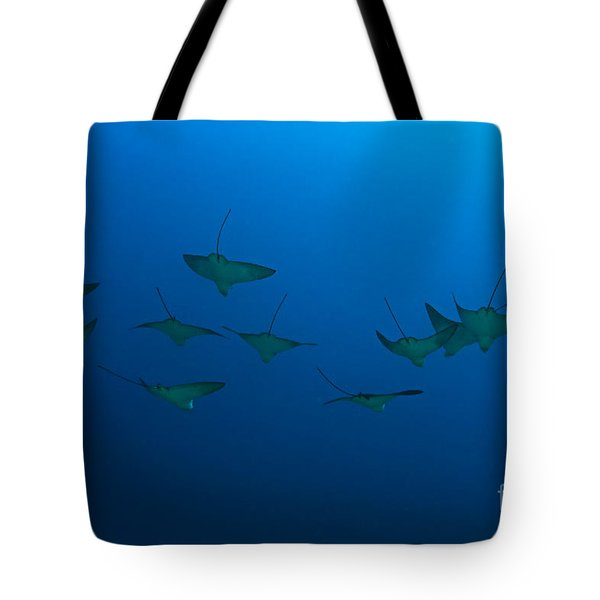 Eagle Rays In Ocean Tote Bag by Dave Fleetham - Printscapes