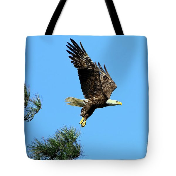 Tote Bag featuring the photograph Eagle Series 1 2017 by Deborah Benoit