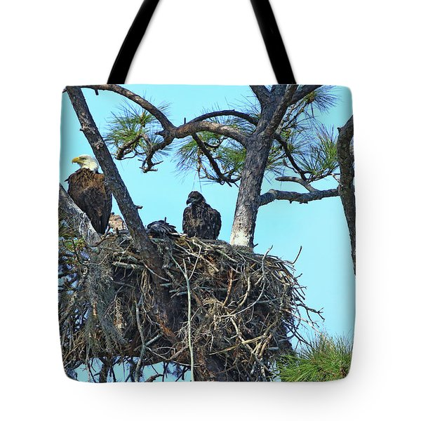 Tote Bag featuring the photograph Eagle Series Baby by Deborah Benoit