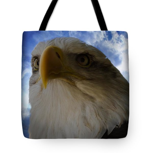 Eagle Tote Bag by Sherman Perry