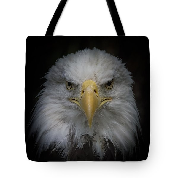 Eagle Stare Tote Bag