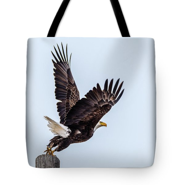 Eagle Taking Flight Tote Bag