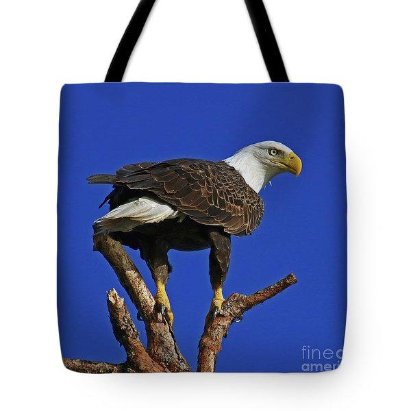 Eagle The Female Tote Bag