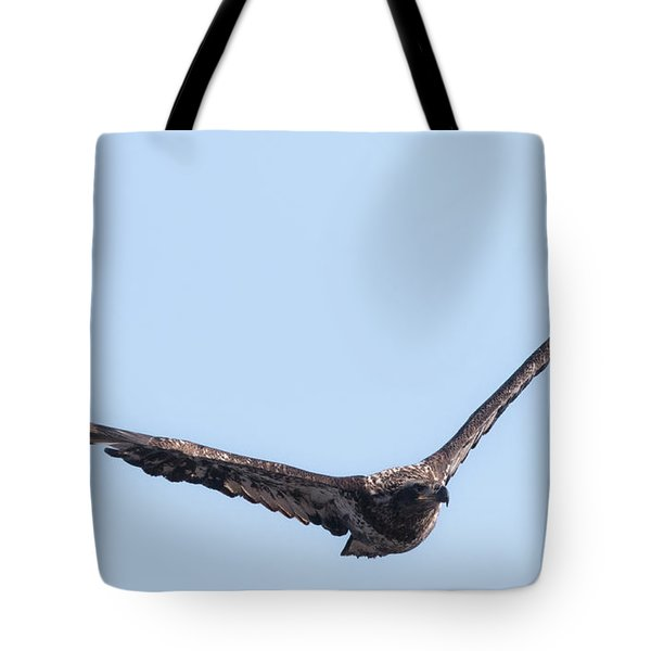 Eagle Watch 2017 Tote Bag by Ricky L Jones