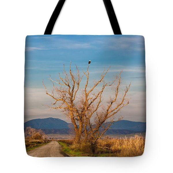 Eagle Watch Tote Bag