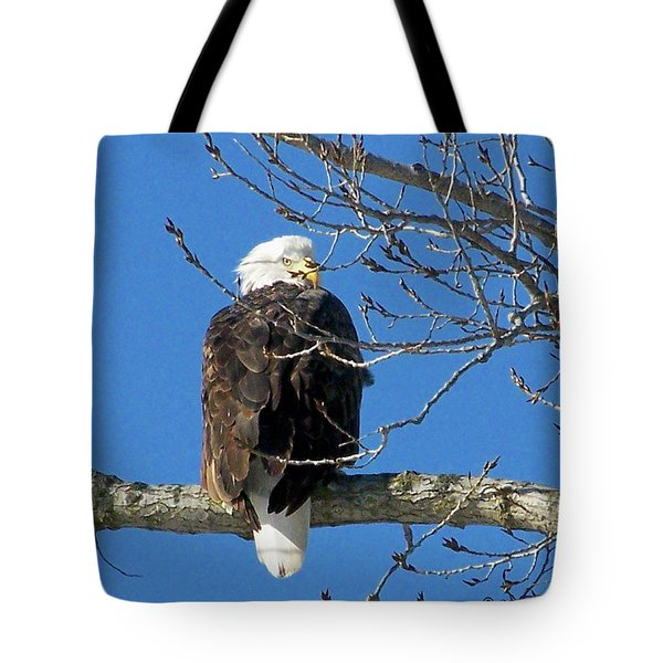 Eagle Watch Tote Bag by Sue Stefanowicz