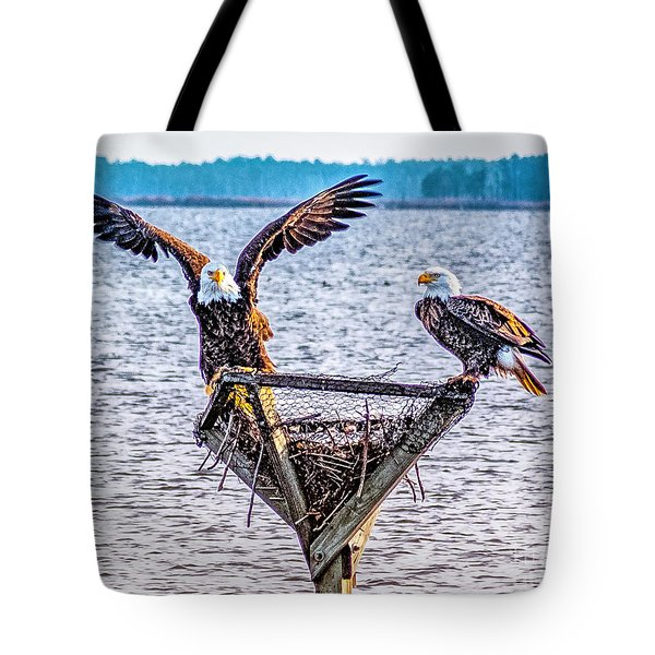 Tote Bag featuring the photograph Eagles In Blackwater Refuge by Nick Zelinsky