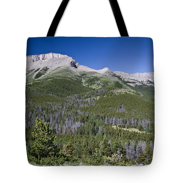 Ear Mountain, Montana Tote Bag