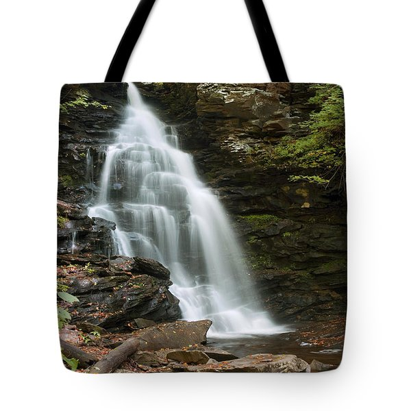Tote Bag featuring the photograph Early Autumn Morning Below Ozone Falls by Gene Walls