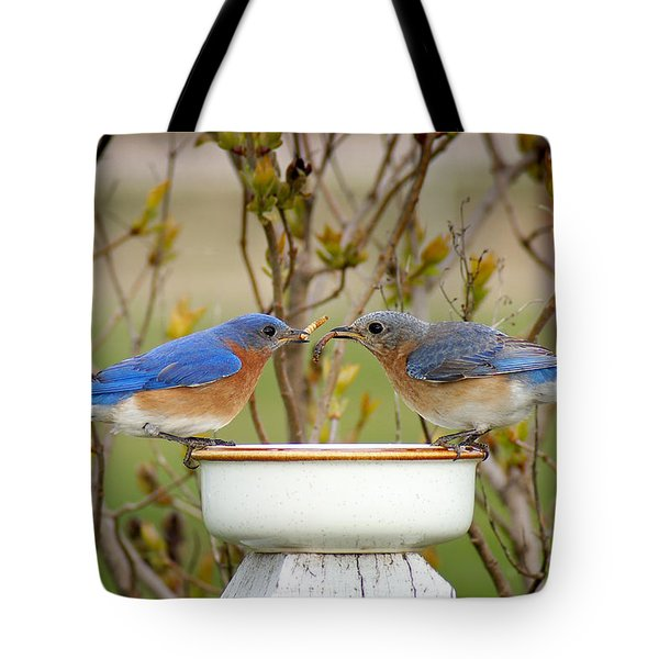 Early Bird Breakfast For Two Tote Bag by Bill Pevlor