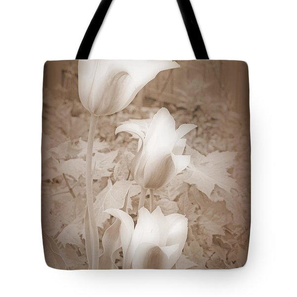 Early Blooming Tulips In Sepia Tote Bag