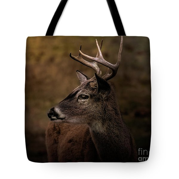 Tote Bag featuring the photograph Early Buck by Robert Frederick