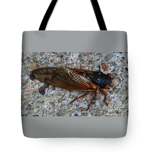 Early Cicada  Tote Bag by J L Zarek