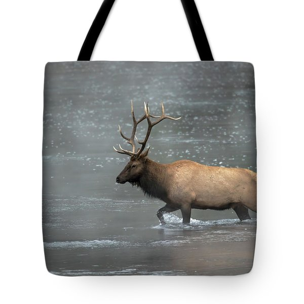 Early Crossing Tote Bag